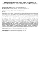 Estado penal e visibilidade social - análise da assistência ao egresso das instituições prisionais à luz da Lei de Execução Penal