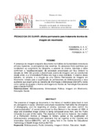 http://repositorio.febab.libertar.org/temp/snbu/SNBU2008_137.pdf