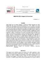 http://repositorio.febab.libertar.org/temp/snbu/SNBU2008_169.pdf
